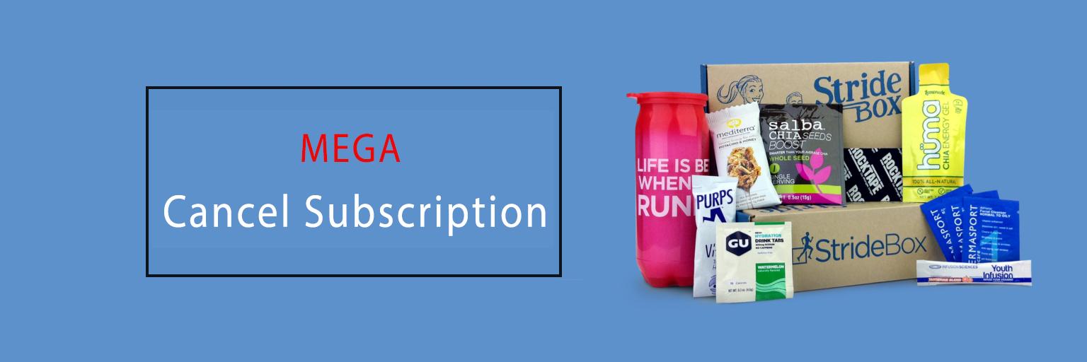 Cancel MEGA Subscription
